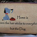 Home is where the hair sticks to everything but the dog