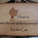 Home is where the hair sticks to everything but the cat