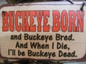 Buckeye Born and Buckeye bred. And when I die I'll be Buckeye dead  -  Cat No:   -  Click To Order  -  ID: 855